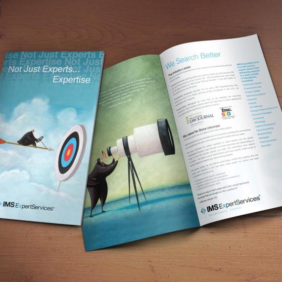 IMS_brochure_1100x875